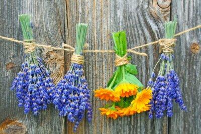 Poster ringelblume lavendel und