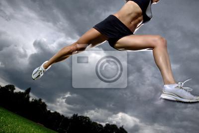 Poster salto