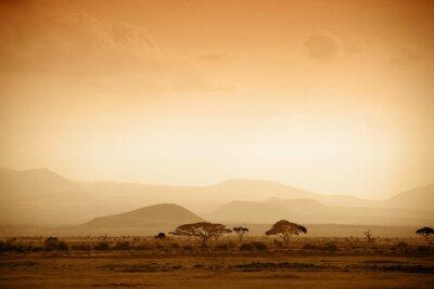 Poster savana africano ao nascer do sol