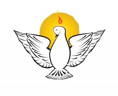 Simbolo Do Espirito Santo Uma Pomba Branca Com Halo De Raios