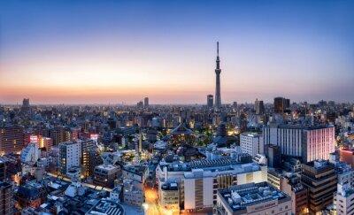 Poster Skyline de Tokyo com Skytree