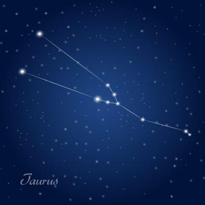 Poster Taurus sinal da constelação do zodíaco no céu nocturno estrelado