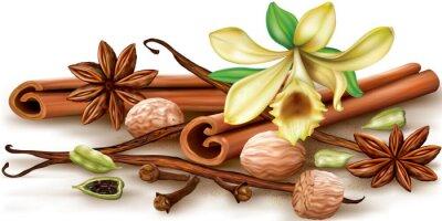 Poster Temperos aromáticos secos
