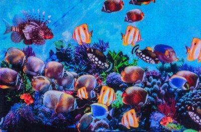 Poster Textura de tecido de impressão listrado aquário
