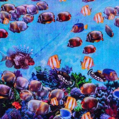 Poster texture of print fabric striped aquarium