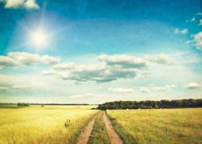 Poster Um campo de trigo dourado e céu azul