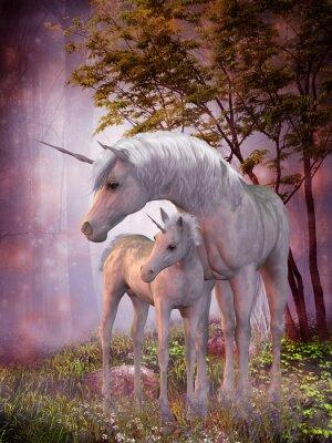 Poster Unicorn Égua e potro