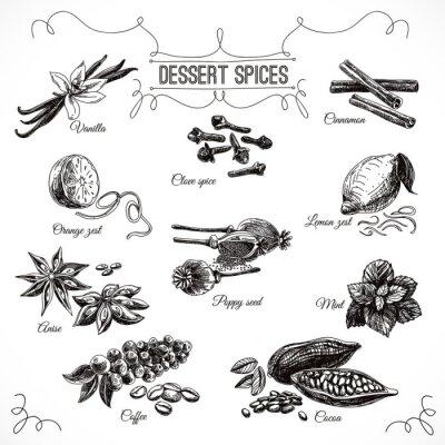 Poster Vector Jogo desenhado mão com especiarias sobremesa.