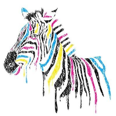 Poster Vector zebra com listras coloridas, estilo do esboço