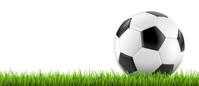 Poster Vectoriel Ballon de football 2