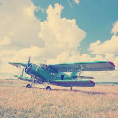 Poster Velho, avião, verde, capim