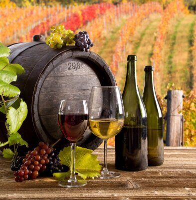 Poster Vinho ainda-vida, vidro, jovem vinha e cacho de uvas