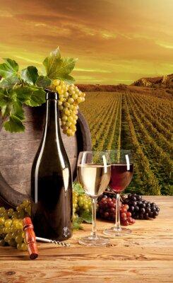 Poster Vinho na vinha
