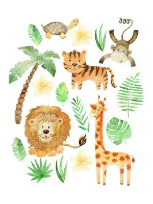 Poster Watercolor safari arrangements.