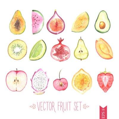 Poster Watercolor vector fruit set