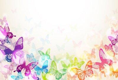 Poster 蝶 々