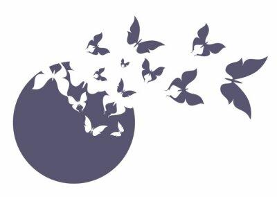 Poster Бабочка