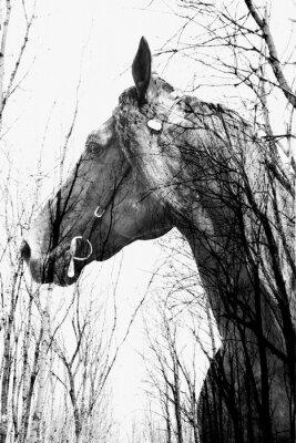 Quadro A floresta dentro do cavalo ina arte, multiexposição