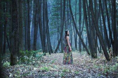 Quadro A menina em uma floresta escura