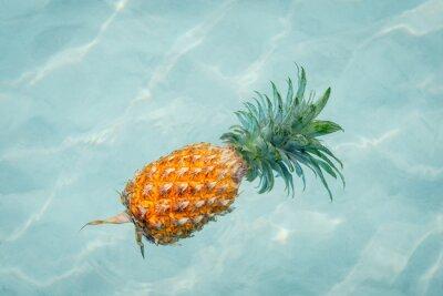 Quadro Abacaxi, água, ensolarado, praia