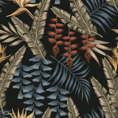 Quadro Abstract color tropical seamless black background