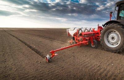 Quadro Agricultor, com, trator, semeadura, -, semeadura, colheitas, em, agrícola, campo, em, primavera