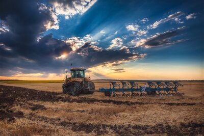 Quadro Agricultor, trator, preparar, terra, cultivador