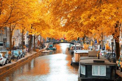 Quadro Amsterdam.