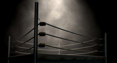 Quadro Anel Boxing Classic Vintage