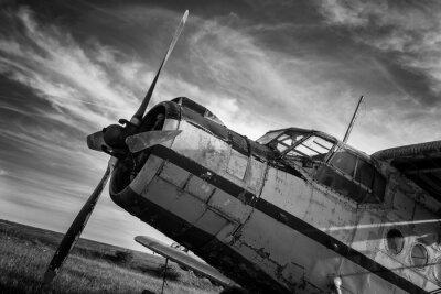 Quadro Antigo avião no campo em preto e branco