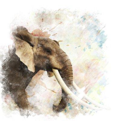 Quadro Aquarela Imagem De Elefante