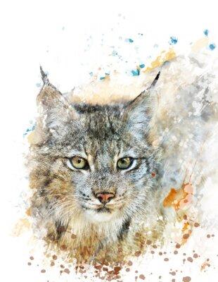 Quadro Aquarela Imagem Do Lynx