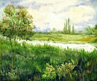 Quadro Aquarela paisagem. Jovem, árvore, em, prado, perto, rio