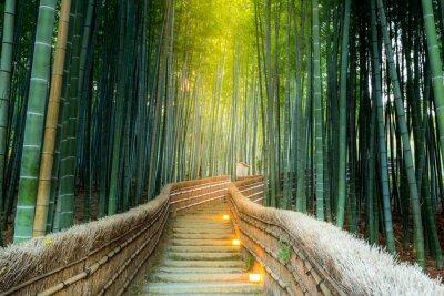 Quadro Arashiyama Bamboo Forest