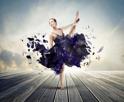 Quadro Ballet Criativo