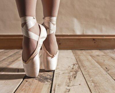 Quadro Ballet Shoes no assoalho de madeira