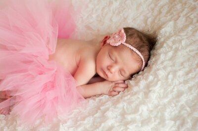 Quadro Bebé recém-nascido vestindo um tutu rosa