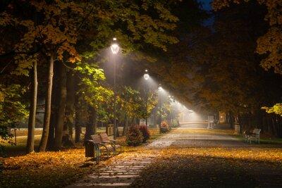 Quadro Beco outonal no parque à noite em Konstancin Jeziorna, Mazowieckie, Polónia