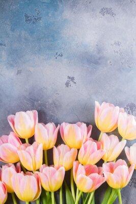 Quadro Beira de tulipas cor-de-rosa e amarelas no fundo de pedra cinzento com espaço da cópia