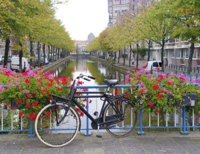 Quadro bicicleta em uma ponte