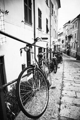 Quadro Bicicleta nel vicolo