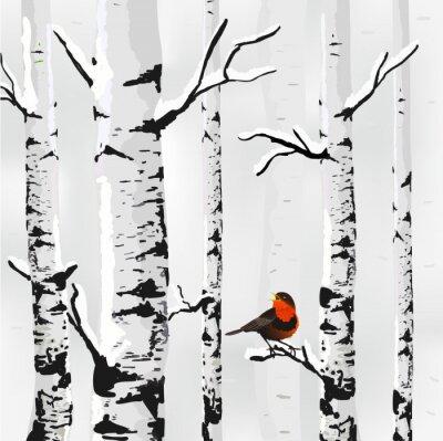 Quadro Birch na neve, cartão de inverno em vetor