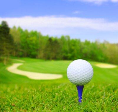 Quadro Bola de golfe em curso