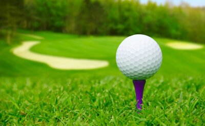 Quadro Bola de golfe no curso