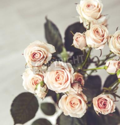 Quadro Bonito, buquet, pêssego, rosas, vindima, vaso, pretas, fundo