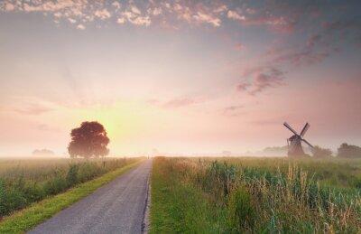 Quadro Bonito, verão, amanhecer, holandês, terra cultivada