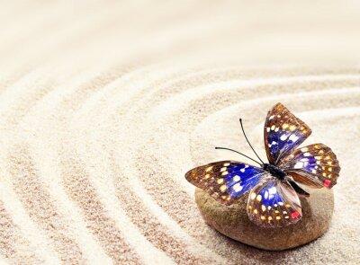Quadro Borboleta, areia