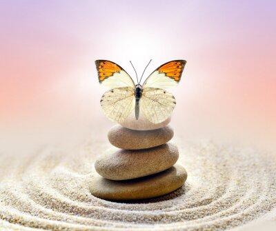 Quadro Borboleta e pedras equilíbrio