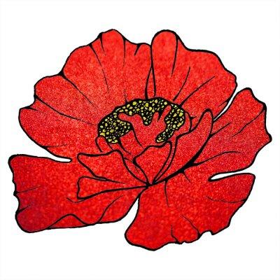 Quadro Borrado, vermelho, escarlate, brilho, flor, papoula, fundo, textura
