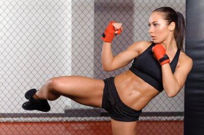 Quadro Boxer fêmea lutar em um ringue